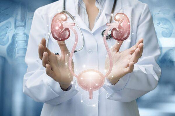طب-أمراض-الكلى